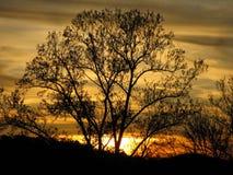 Ηλιοβασίλεμα στη βόρεια Γεωργία - κίτρινη Στοκ Εικόνες