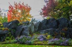 Ηλιοβασίλεμα στον κήπο Στοκ φωτογραφία με δικαίωμα ελεύθερης χρήσης