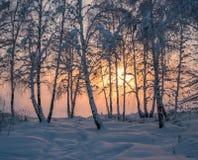 Ηλιοβασίλεμα στον ποταμό Angara Στοκ φωτογραφίες με δικαίωμα ελεύθερης χρήσης