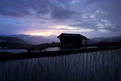 Ηλιοβασίλεμα στον τομέα ρυζιού Bong Piang, Ταϊλάνδη Στοκ φωτογραφία με δικαίωμα ελεύθερης χρήσης