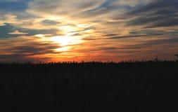 Ηλιοβασίλεμα στον τομέα Στοκ Εικόνα