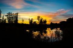 Ηλιοβασίλεμα στον υγρότοπο δασικός Δούναβης Στοκ εικόνες με δικαίωμα ελεύθερης χρήσης