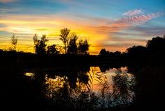 Ηλιοβασίλεμα στον υγρότοπο δασικός Δούναβης Στοκ φωτογραφία με δικαίωμα ελεύθερης χρήσης