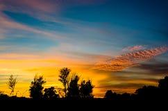 Ηλιοβασίλεμα στον υγρότοπο δασικός Δούναβης Στοκ Εικόνες
