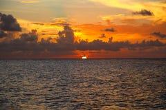 Ηλιοβασίλεμα στους κοκοφοίνικες Cayo Στοκ εικόνες με δικαίωμα ελεύθερης χρήσης