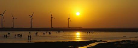 Ηλιοβασίλεμα στους υγρότοπους Gaomei Στοκ εικόνες με δικαίωμα ελεύθερης χρήσης