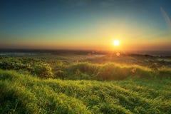 Ηλιοβασίλεμα στο πεδίο του σίτου Σύνθεση της φύσης Στοκ εικόνα με δικαίωμα ελεύθερης χρήσης