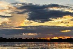 Ηλιοβασίλεμα στο τροπικό δάσος του Αμαζονίου, Manaos, Βραζιλία Στοκ Φωτογραφία