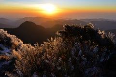 Ηλιοβασίλεμα στο υψηλό βουνό της Ταϊβάν Στοκ Φωτογραφίες