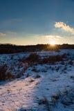 Ηλιοβασίλεμα στο χειμερινό δάσος με το φως του ήλιου Στοκ φωτογραφία με δικαίωμα ελεύθερης χρήσης