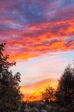 Ηλιοβασίλεμα στο χωριό, περιοχή Tver, της Ρωσίας Στοκ εικόνα με δικαίωμα ελεύθερης χρήσης