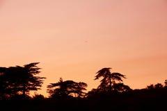 Ηλιοβασίλεμα της Αγγλίας στοκ εικόνα με δικαίωμα ελεύθερης χρήσης