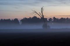 Ηλιοβασίλεμα της Misty Στοκ εικόνα με δικαίωμα ελεύθερης χρήσης