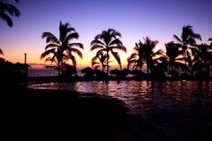 Ηλιοβασίλεμα τοπίων στην παραλία με τους φοίνικες Στοκ Εικόνες