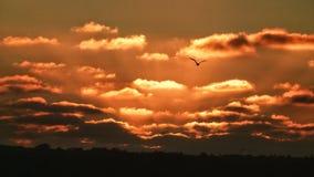 Ηλιοβασίλεμα του Σαν Ντιέγκο στοκ φωτογραφία με δικαίωμα ελεύθερης χρήσης