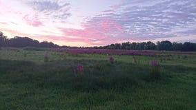 Ηλιοβασίλεμα φύσης Στοκ Φωτογραφίες
