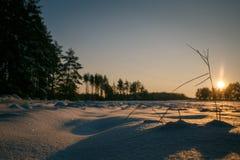 Ηλιοβασίλεμα χειμερινών τομέων με το χιόνι Στοκ Φωτογραφίες