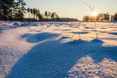 Ηλιοβασίλεμα χειμερινών τομέων με το χιόνι Στοκ Εικόνα