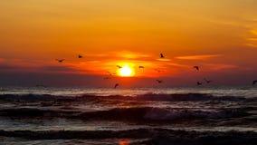 Ηλιοβασίλεμα Όμορφο ηλιοβασίλεμα Μαύρη Θάλασσα Χρυσό ηλιοβασίλεμα θάλασσας Στοκ φωτογραφία με δικαίωμα ελεύθερης χρήσης