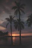 Ηλιοβασίλεμα 4 Στοκ Εικόνες