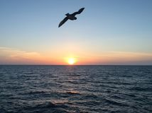 Ηλιοβασίλεμα barentssea στοκ φωτογραφία