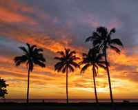 Ηλιοβασίλεμα Olona Ko Στοκ εικόνες με δικαίωμα ελεύθερης χρήσης