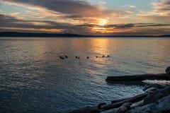 Ηλιοβασίλεμα 8 Pacific Northwest στοκ εικόνες
