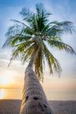 Ηλιοφάνεια θάλασσας Στοκ φωτογραφία με δικαίωμα ελεύθερης χρήσης