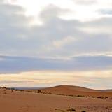 ηλιοφάνεια στην έρημο της άμμου και του αμμόλοφου του Μαρόκου Στοκ εικόνες με δικαίωμα ελεύθερης χρήσης