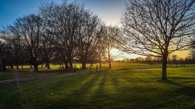 Ηλιοφάνεια το βράδυ σε Felbrigg, Norfolk στοκ εικόνα