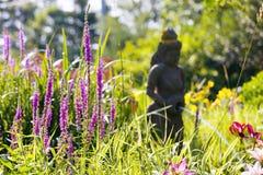 Ηλιοφώτιστος κήπος στοκ φωτογραφία με δικαίωμα ελεύθερης χρήσης