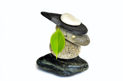 η ισορροπία ανασκόπησης ισορρόπησε κοντά χρωματισμένος τέσσερις γκρίζες πέτρες πετρών χαλικιών επάνω Στοκ εικόνες με δικαίωμα ελεύθερης χρήσης