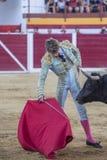 Η ισπανική ταυρομαχία του Manuel Escribano ταυρομάχων με το γ στοκ φωτογραφία με δικαίωμα ελεύθερης χρήσης