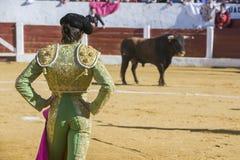 Η ισπανική ταυρομαχία του Sebastian Castella ταυρομάχων με Στοκ φωτογραφία με δικαίωμα ελεύθερης χρήσης