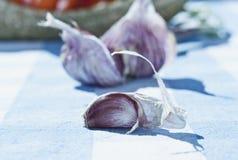 Η Ιταλία, Τοσκάνη, Magliano, κλείνει επάνω του σκόρδου στον πίνακα Στοκ Φωτογραφία