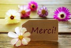 Ηλιόλουστη ετικέτα με το γαλλικό κείμενο Merci με τα άνθη Cosmea Στοκ εικόνες με δικαίωμα ελεύθερης χρήσης
