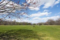 Ηλιόλουστη ημέρα στο Central Park στοκ εικόνες με δικαίωμα ελεύθερης χρήσης
