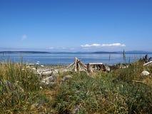 Ηλιόλουστη θερινή ημέρα σε μια δύσκολη παραλία με μια σκηνή Driftwood Tipi όπως τον αριθμό στην απόσταση Στοκ εικόνες με δικαίωμα ελεύθερης χρήσης