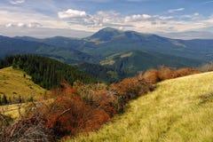 Ηλιόλουστη θερινή ημέρα Carpathians Στοκ εικόνες με δικαίωμα ελεύθερης χρήσης