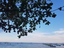 Ηλιόλουστη παραλία Στοκ εικόνες με δικαίωμα ελεύθερης χρήσης