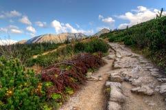 Ηλιόλουστη πορεία βουνών φθινοπώρου Στοκ Φωτογραφία