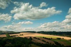 Ηλιόλουστοι τομείς με έναν νεφελώδη ουρανό. στοκ φωτογραφία με δικαίωμα ελεύθερης χρήσης