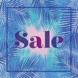 ηλιόλουστος φοινικών φύλλων ημέρας που λαμβάνεται Πώληση Έμβλημα ή αφίσα Ιστού για το ηλεκτρονικό εμπόριο, σε απευθείας σύνδεση ο Στοκ Εικόνες