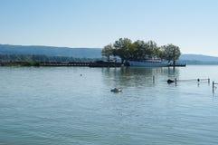 Ηλιόλουστο θερινό πρωί Balaton λιμνών Στοκ Εικόνες