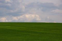 Ηλιόλουστο καλοκαίρι ουρανού ημέρας Στοκ φωτογραφία με δικαίωμα ελεύθερης χρήσης