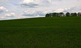 Ηλιόλουστο καλοκαίρι ουρανού ημέρας Στοκ Εικόνα