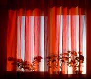 ηλιόλουστο παράθυρο στοκ φωτογραφίες