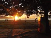 Ηλιόλουστο πρωί στην ακροθαλασσιά Στοκ φωτογραφίες με δικαίωμα ελεύθερης χρήσης