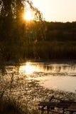 Ηλιόλουστο τοπίο πρωινού Στοκ εικόνες με δικαίωμα ελεύθερης χρήσης