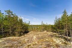 Ηλιόλουστο τοπίο Στοκ εικόνες με δικαίωμα ελεύθερης χρήσης